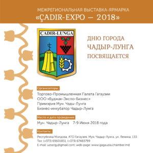 expo copy-6